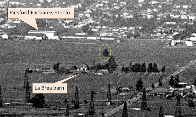 This view north from the same aerial image shows the landmark tree (oval) and the south face of the La Brea barn.  Construction of the Robin Hood castle set has yet to commence.