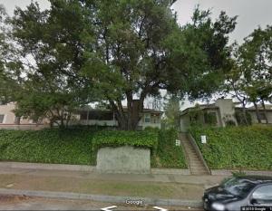920 N Verdugo Road - tree c