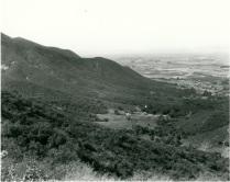 BOAN view south